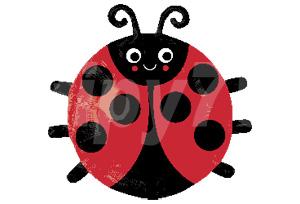 歡樂小瓢蟲